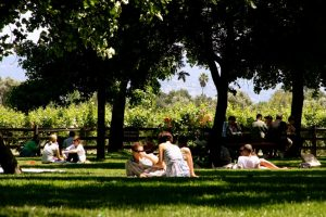 Couples on the V. Sattui picnic lawn, one of the most romantic places in Napa