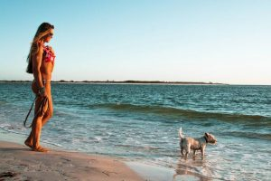 A woman and dog on the beach in Clearwater Florida, one of the most dog friendly cities in the US