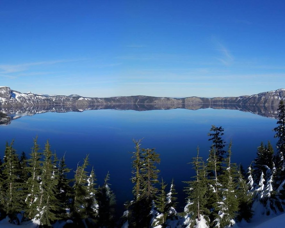 Crater Lake surrounded by trees on a cloudless day