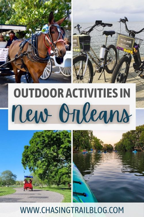 A photo collage with a horse pulling a carriage; two bicycles at Lake Pontchartrain; kayakers paddling down Bayou St. John; and a surrey in City Park