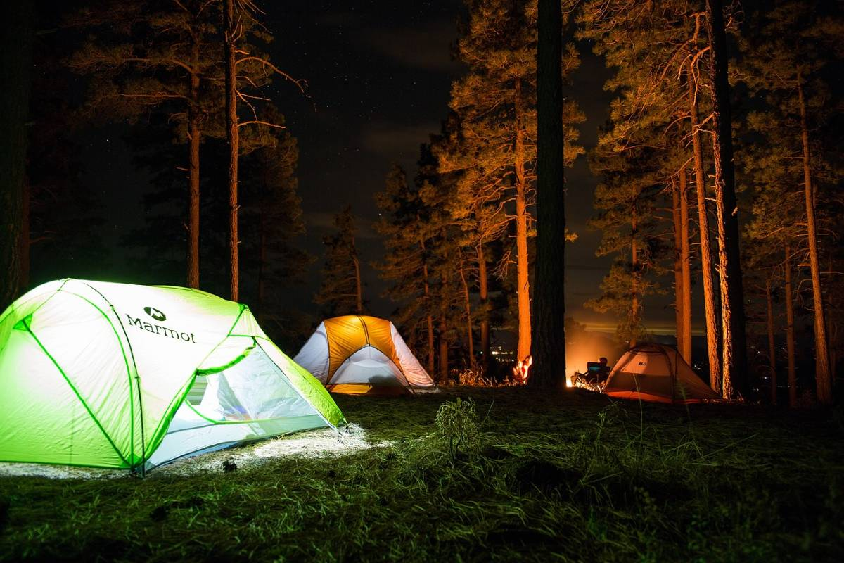Several tents illuminated in the night sky in a forest